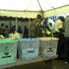 Elections Observation