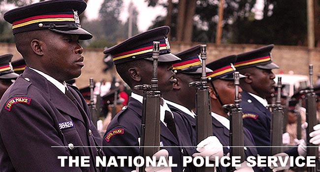 The National Police Service